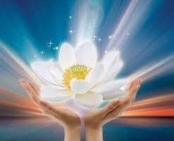Mensaje de la Madre Divina: Para un creador, todo es posible