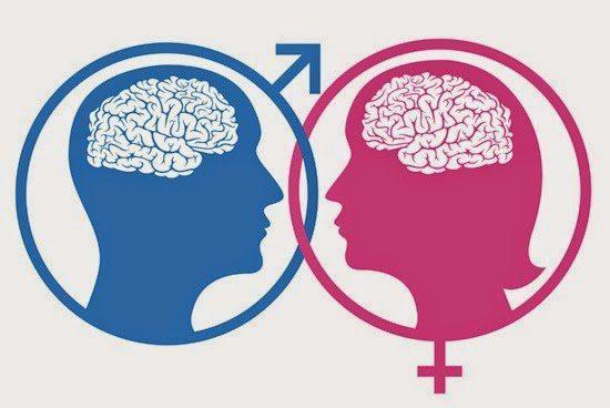 20170927 kikio327154 id132933 IMAGEN 3 - ¿Iguales o similares? Parte I: La delgada línea entre la diferenciación sexual biológica y el sexismo - hermandadblanca.org