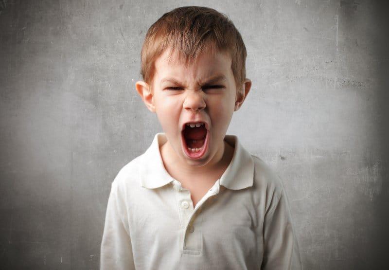elenfadoylarabia - El Enfado y La Rabia en los Niños - Técnicas para trabajar estas emociones - hermandadblanca.org