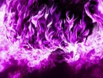 20171120 carolina396 id135285 tumblr mfd3834sG91qh5n5so1 r1 500 - Oración de la llama violeta - hermandadblanca.org