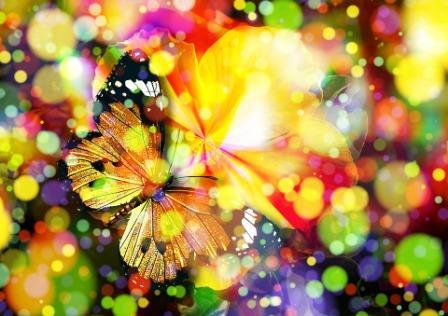 20171126 carolina396 id135580 butterfly 407746 960 720 - El Morya: Transformando la agresión en conciencia de sí mismo- Parte 2 - hermandadblanca.org