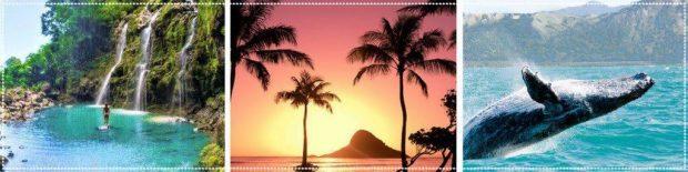 20171128 jorge id135653 mari carmen martinez tomas viajes - Viaje a Hawaii