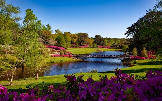 20171209 carolina396 id136016 bellingrath gardens alabama landscape scenic 158063 - ¿Se puede tratar la esquizofrenia con biodescodificación? - hermandadblanca.org