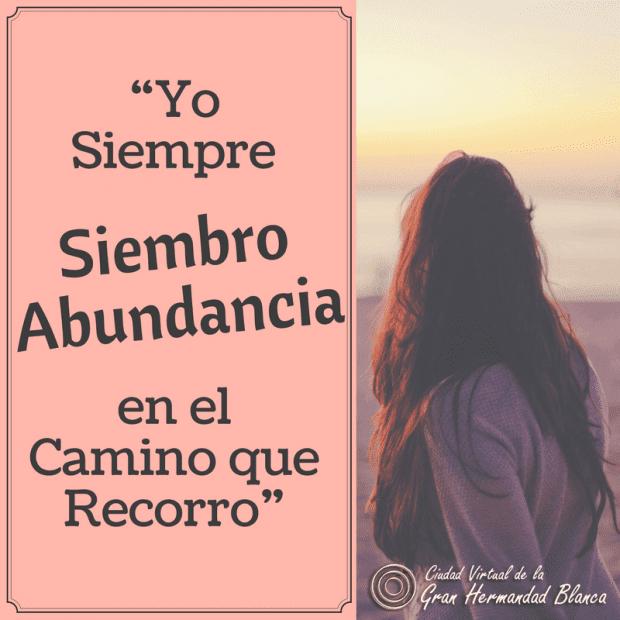 20171213 willyhern39164 id136145 Yo Siempre Siembro Abundancia en el Camino que Recorro - ¡Me declaro en Abundancia!, Decretos Metafísicos para el Dinero y la Abundancia, ¡Puedes Descargarlos! - hermandadblanca.org