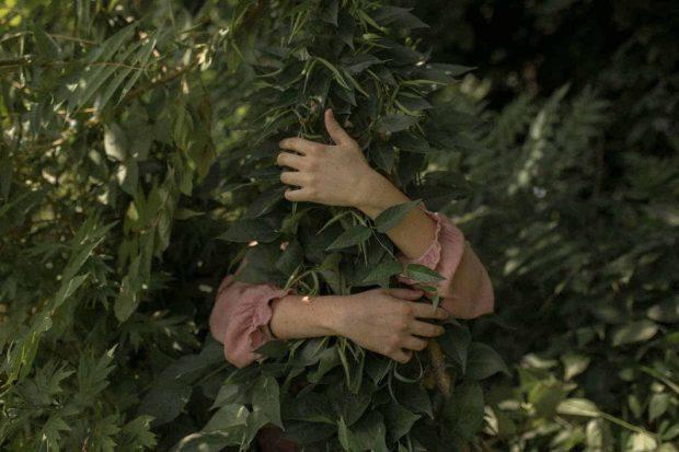 20171218 santosav35291 id136308 Abrazar Naturaleza HB SAR - La Madre Tierra nos habla, escucha su mensaje - hermandadblanca.org