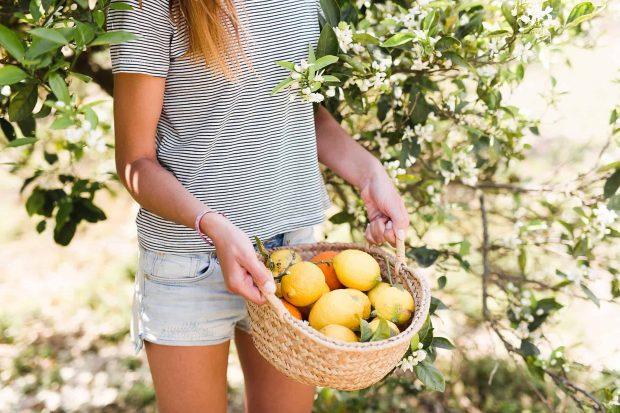 20171222 willyhern39164 id136488 Limones del limonero 0006 - Tips Sencillos para Eliminar Energías Negativas con Limones, ¡quedarás impresionado! - hermandadblanca.org