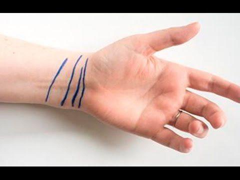20180121 willyhern39164 id137323 hqdefault - ¿Qué significan las líneas en tu muñeca? Mírate, observa cuántas tienes, y lee el mensaje que tenemos para ti - hermandadblanca.org