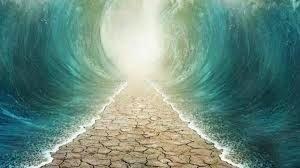 20180122 ana murillo id136880 apertura de aguas - La fe, ¿Qué es la fe? los movimientos de la vida, los saltos al vacío… - hermandadblanca.org