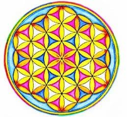 20180314 jorge id145037 apuntate ecurso geometria sagrada marzo 2018 la flor de la vida - Apúntate al eCurso de Geometría Sagrada! Marzo 2018 - hermandadblanca.org