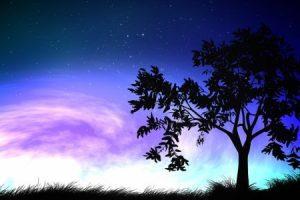 Mensaje de Sananda: Abrazando a la oscuridad