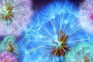 Cómo ver el aura, cómo interpretarla y armonizarla