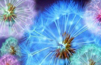 couleurs aura cómo ver el aura, cómo interpretarla y armonizarla ID148451 - hermandadblanca.org