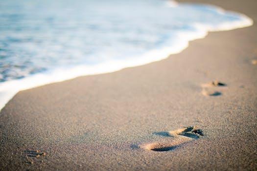id146695 seguir los pasos - Ser o no ser, esa es la cuestión ~ Mensaje de Dios Padre - hermandadblanca.org