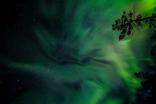 id147221 pexels photo 902757 - Mensaje de Quan Yin: El Próximo Gran Cambio de Gaia y la Humanidad - hermandadblanca.org
