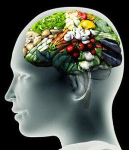 alimentos mente de regreso a tu origen nutricional ID149565 - hermandadblanca.org