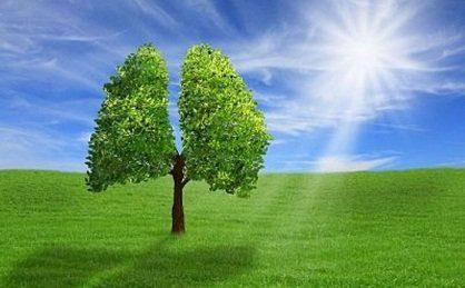 expansion el poder se encuentra en vosotros, solo debéis realizarlo con el cora ID150831 - hermandadblanca.org