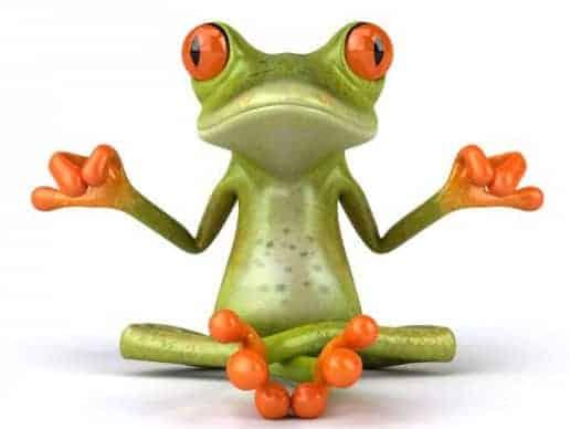 rana meditacion superpoderes akáshicos: el secreto ID150105 - hermandadblanca.org