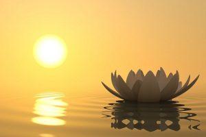 Permítete sentir la energía y la luz que se mueve a través de ti. Ábrete para recibir.