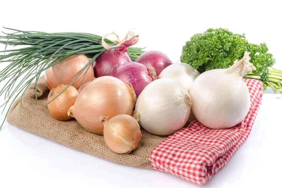 cebollas medicinales la cebolla: ¿conoces su propiedades medicinales y nutricionales?, ¿s ID151529 - hermandadblanca.org