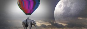 cualestumisionenlavida ¿conoces cual es tu misión en la vida? parte 1 – por roberto pér ID153313 - hermandadblanca.org