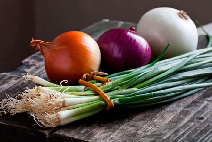 propiedades de la cebolla la cebolla: ¿conoces su propiedades medicinales y nutricionales?, ¿s ID151529 - hermandadblanca.org