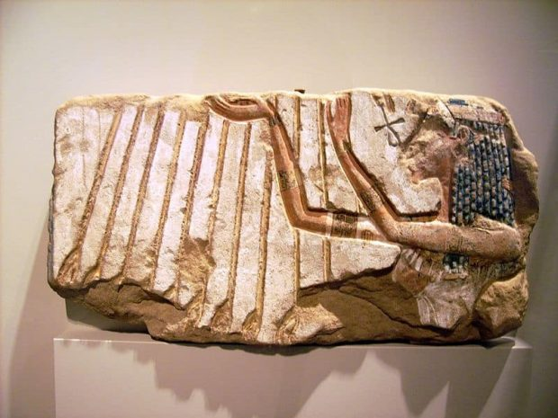 quien fue aton el culto egipcio ¿quién fue atón? el culto egipcio ID152733 - hermandadblanca.org