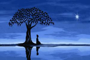 Cambios del despertar: el Pilar de Luz Maestra de los Seres Blancos Celestiales