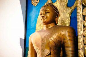 Mensaje del Señor Buda: los Cuatro sistemas corporales