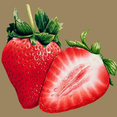 fresas para mantener el cuerpo sano ¿por qué las plantas son esenciales y tan indispensables para recupe ID154323 - hermandadblanca.org