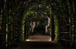 garden path way park responsabilidad: la puerta de entrada a la ascensión, por saint germa ID155029 - hermandadblanca.org