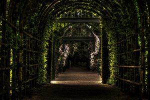 Saint Germain: Responsabilidad, La puerta de entrada a la Ascensión