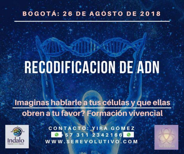 "ser evolutivo recodificacion adn seminario de 3 días ""vive a kryon en ti"" ID153865 - hermandadblanca.org"