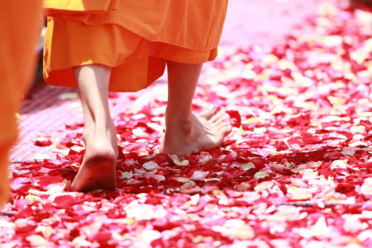 vipassana meditacion caminada