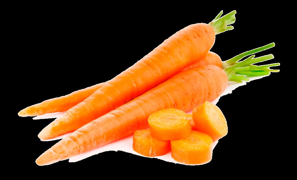 zanahorias para mantener el cuerpo sano ¿por qué las plantas son esenciales y tan indispensables para recupe ID154323 - hermandadblanca.org