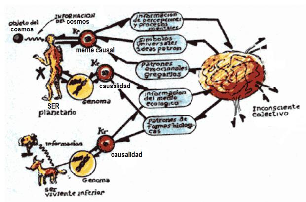 bucle cibernetico la interpretacion entre la cibercultura y la semiosfera ID156759 - hermandadblanca.org