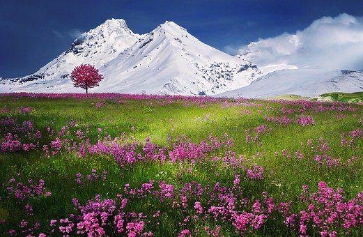 mountains 736886 340 mensaje de jesús: todos ustedes tienen egos, y para vivir en la forma ID156481 - hermandadblanca.org