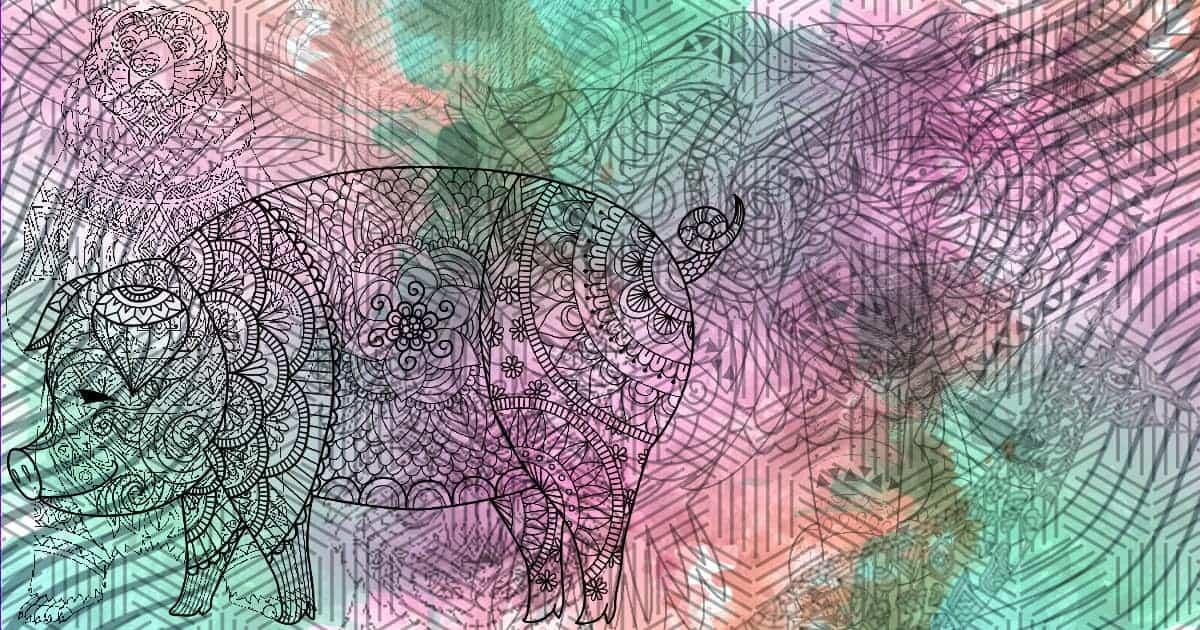 personalidad de cerdo si este es el primer animal el primer animal que observes te revelará información importante sob ID156669 - hermandadblanca.org