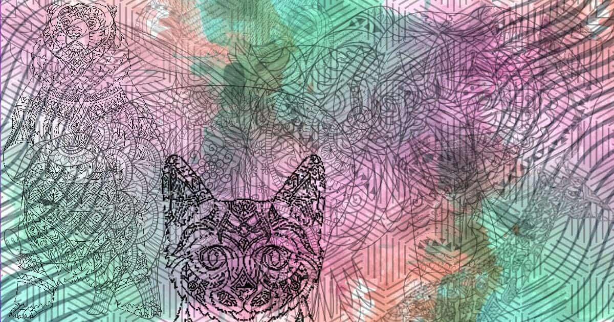 personalidad de gato si este es el primer animal el primer animal que observes te revelará información importante sob ID156669 - hermandadblanca.org