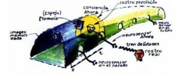 tren de conciencia efecto mandela, entre la memoria y la conciencia ID156745 - hermandadblanca.org