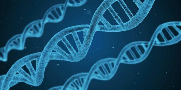1 has escucha hablar de la psiconeuroinmunoendocrinologia ¿has escucha hablar de la psiconeuroinmunoendocrinología? ID157927 - hermandadblanca.org