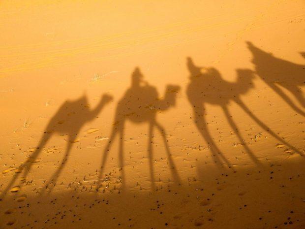 camello sobras en en salud energetica por ana maria olivaparte 1comentarios por gisela salud energética por ana maria oliva – parte 1 – comentarios  ID160433 - hermandadblanca.org