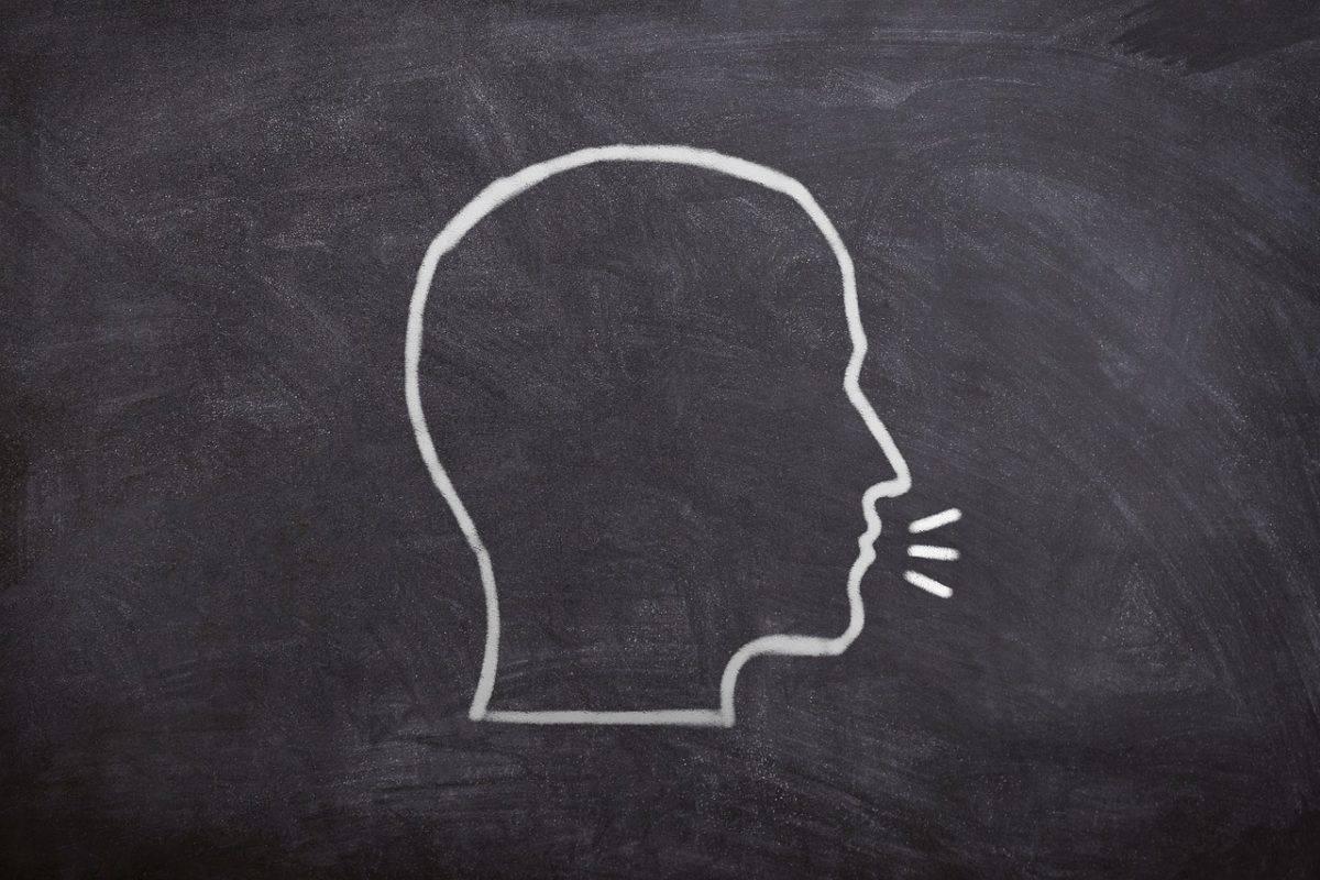 el lenguaje y la expresión
