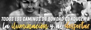 43 gracias 2018 deseos 2019 familia hermandadblanca ID168780 - hermandadblanca.org