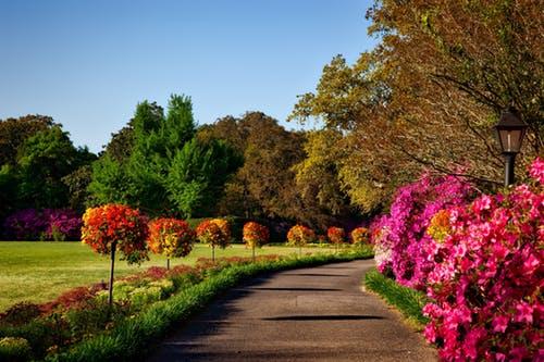 """bellingrath gardens alabama landscape scenic 158028 el arcángel rafael dice """"¡no paremos hasta que la sanación se ID169006 - hermandadblanca.org"""