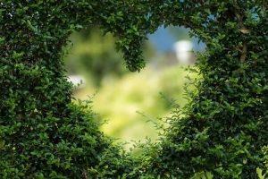 Mensaje de Madre Divina: Está llegando el tiempo del amor, desechen el miedo