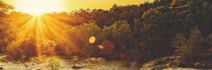 pexels photo 1420440 arcángel gabriel: ¿sabes quién eres y cuál es tu propósito? ID170906 - hermandadblanca.org