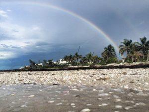 playa2 formaciones profesionales alta vibracion sesiones personalizadas ser e ID170488 - hermandadblanca.org