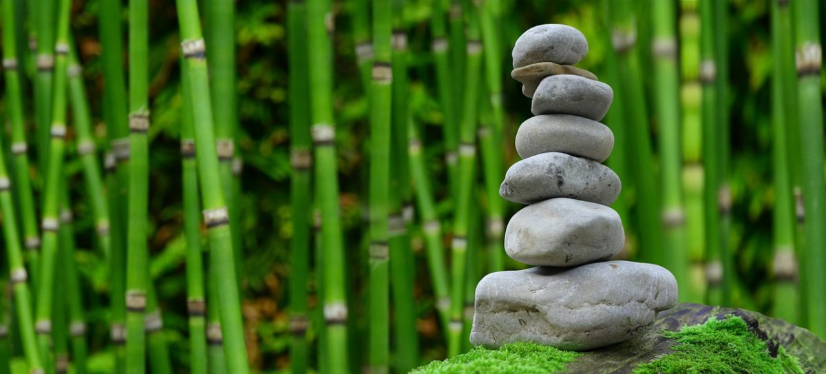 equilibrio chakra raíz