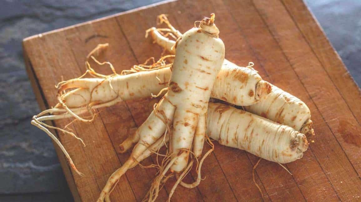 12 plantas medicinales ginseng 12 plantas medicinales que no pueden faltar en tu casa, ¡son extraord ID174283 - hermandadblanca.org