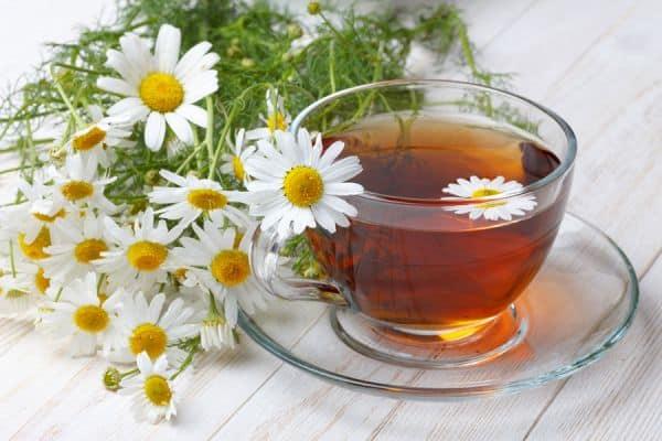 12 plantas medicinales que no pueden faltar 12 plantas medicinales que no pueden faltar en tu casa, ¡son extraord ID174283 - hermandadblanca.org